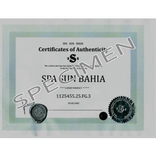 Spas Bahia (4 places)