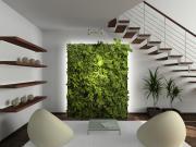 Murs végétaux - Gamme Alpha discount