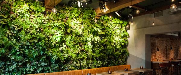 Murs végétaux - Gamme Prestige